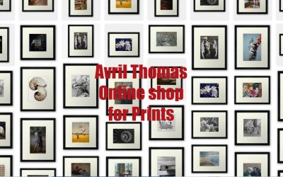 Online shopping – products Prints